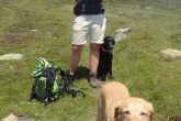 henry_hiking1